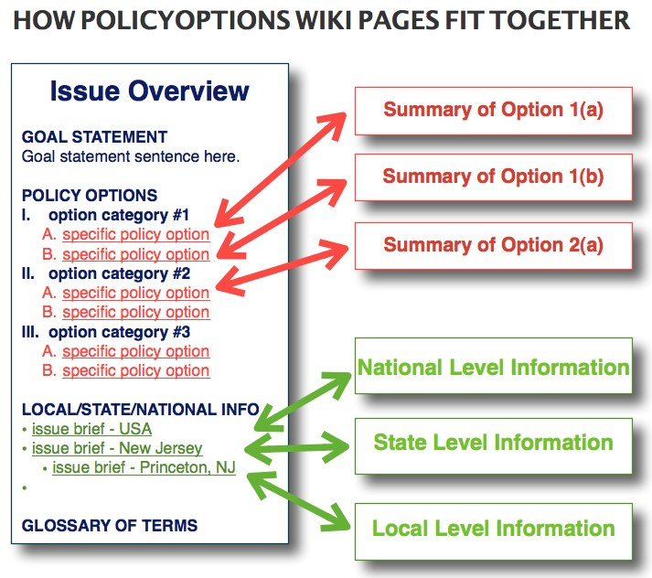 PolicyOptions Wiki / PolicyOptions Issue Brief Template